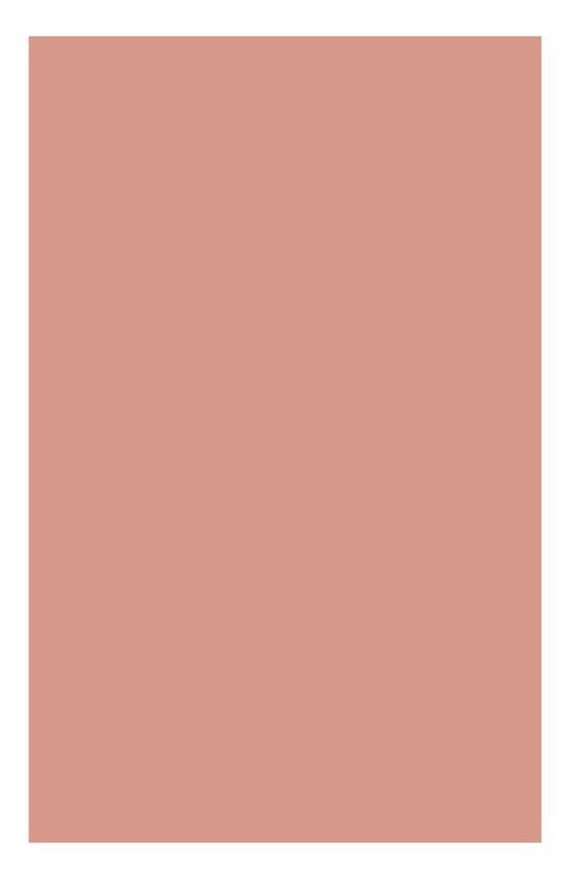 Одноцветные минеральные тени для век 06 Ombre Minerale Clarins 04221610