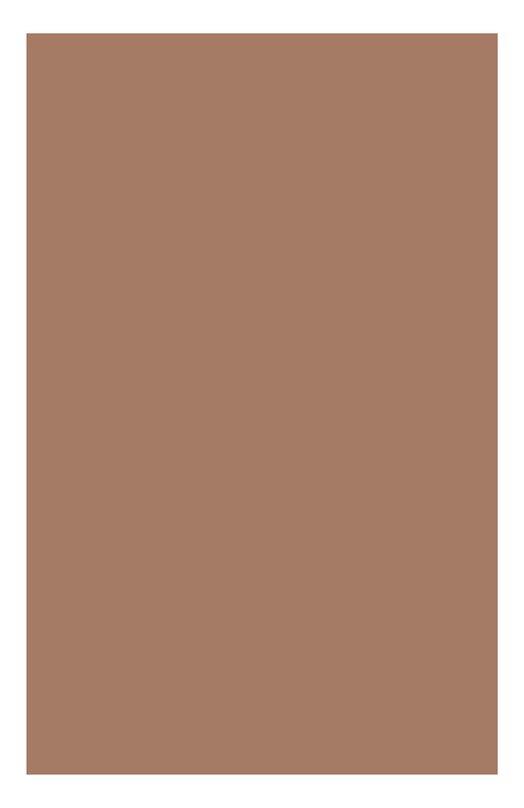 Одноцветные минеральные тени для век 07 Ombre Minerale Clarins 04221710