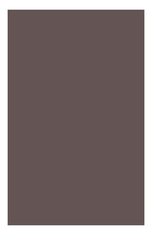 Одноцветные минеральные тени для век 17 Ombre Minerale Clarins 04222710