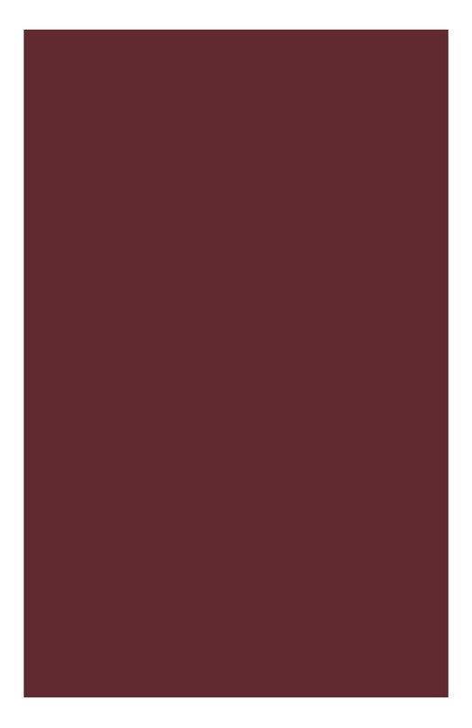 Губная помада Joli Rouge 738 Clarins 04411910