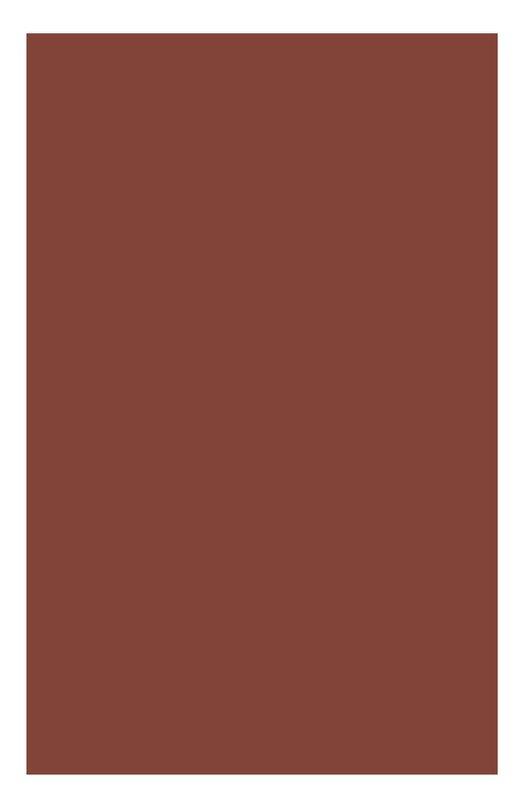 Губная помада Rouge Prodige 133 Clarins 04421310