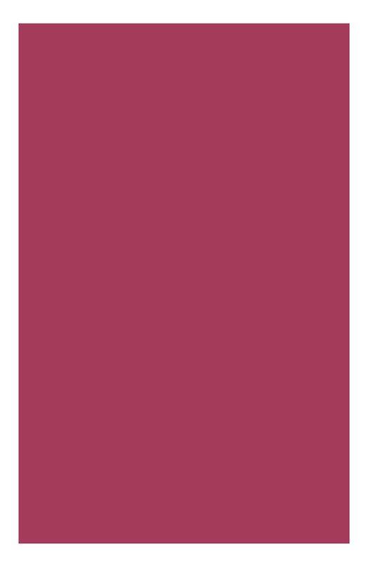 Питательная губная помада Rouge Eclat 17 Clarins 04429710