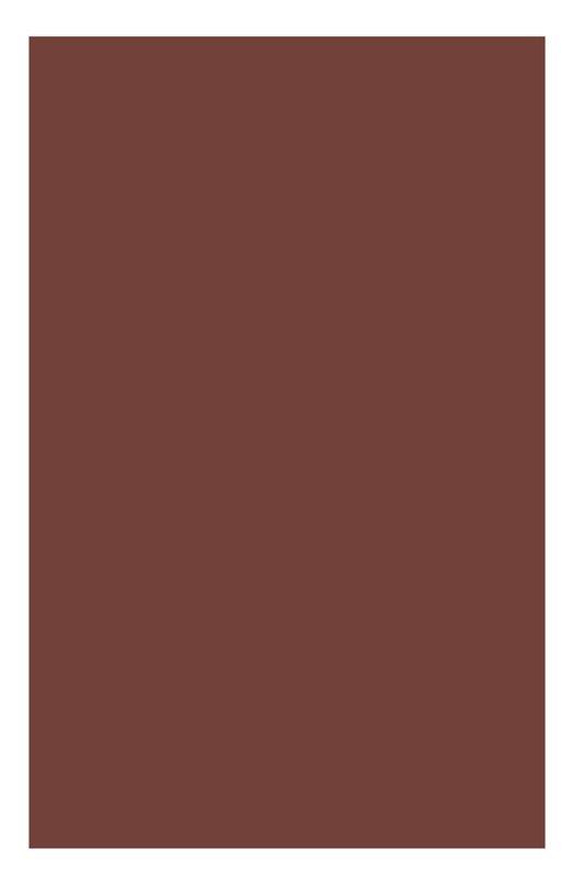 Питательная губная помада Rouge Eclat 19 Clarins 04429910