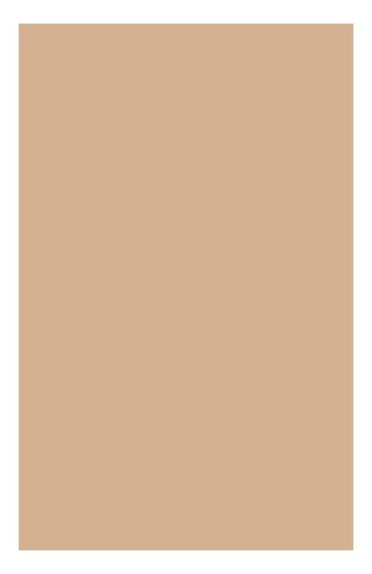 Компактная минеральная пудра с устойчивым матирующим эффектом 01 Ever Matte Clarins 04064610
