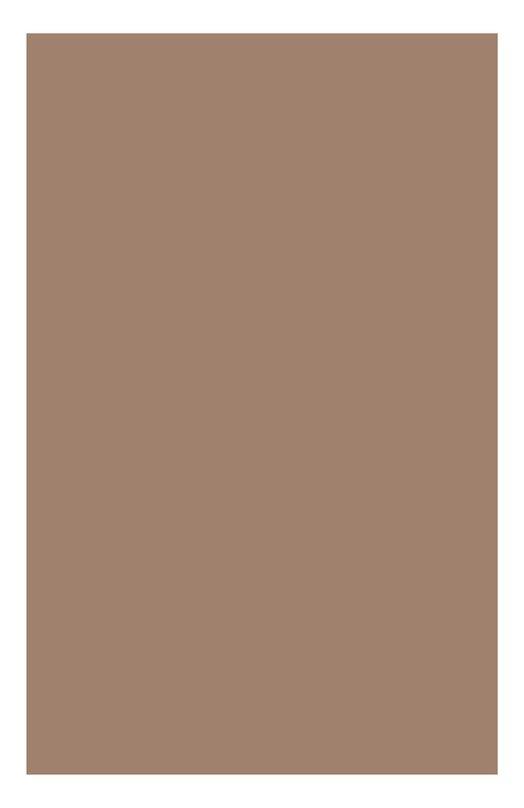 Компактная минеральная пудра с устойчивым матирующим эффектом EVER MATTE 02 Clarins 04064810