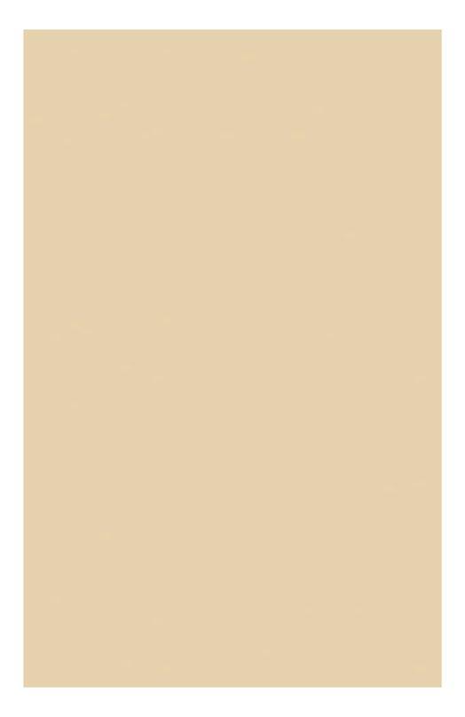 Компактная устойчивая тональная крем-пудра SPF15 105 Everlasting Compact Foundatuin Clarins 04024310