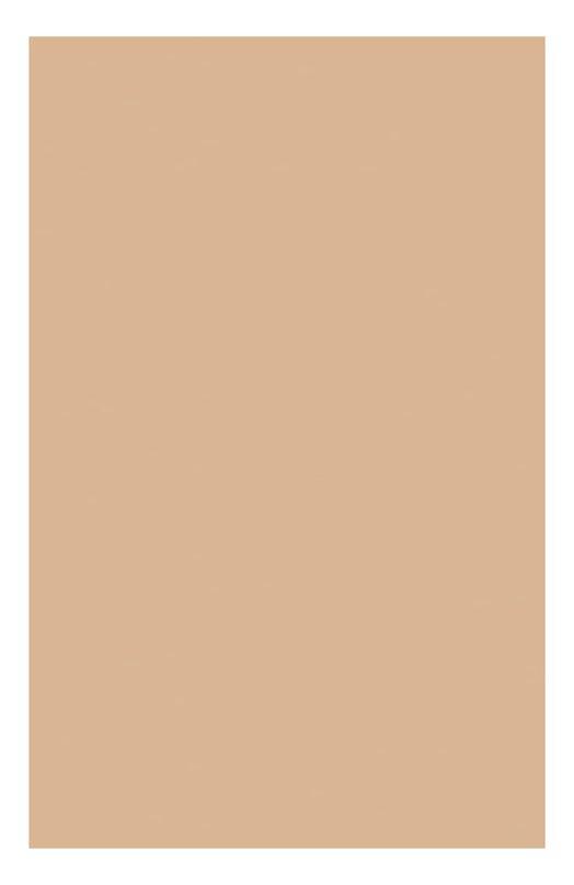 Компактная устойчивая тональная крем-пудра SPF15 109 Everlasting Compact Foundatuin Clarins 04024610