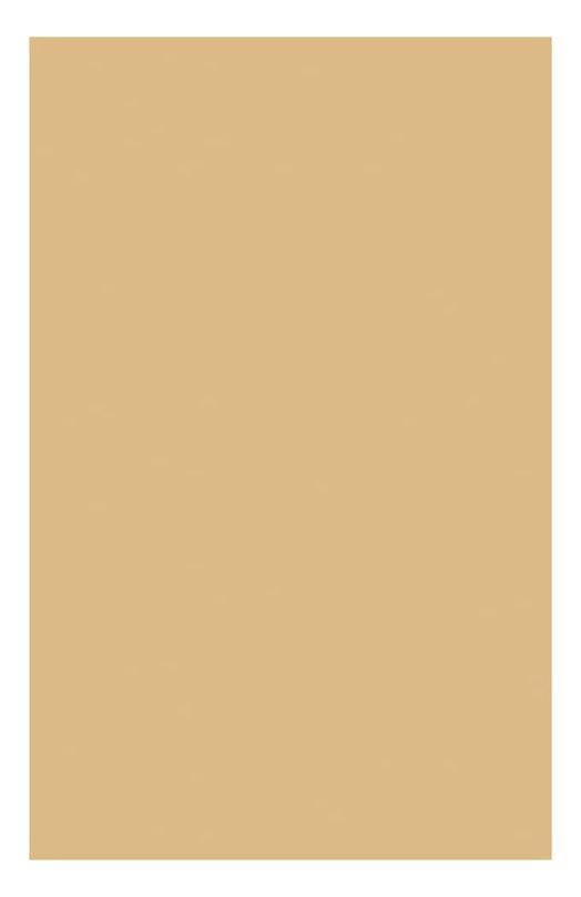 Компактная устойчивая тональная крем-пудра SPF15 110 Everlasting Compact Foundatuin Clarins 04024710