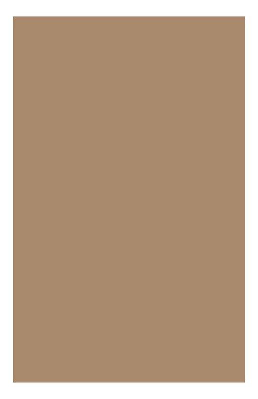 Консилер против темных кругов моментального действия Instant Concealer 03 Clarins 04057310