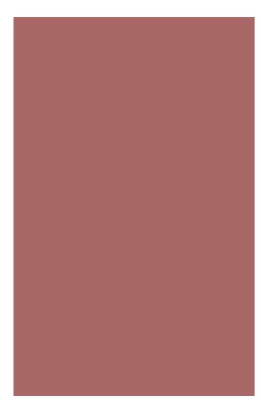 Кремовые румяна Multi Blush 04 Clarins 04063410