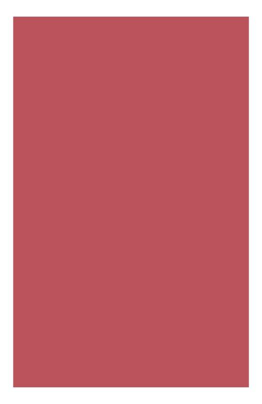 Питательная губная помада Rouge Eclat 13 Clarins 04429310