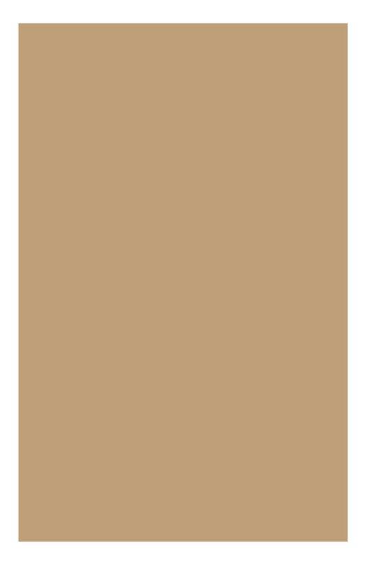 Питательный тональный крем для сухой кожи SPF15 Extra-Comfort SPF15 114 Clarins 04062010