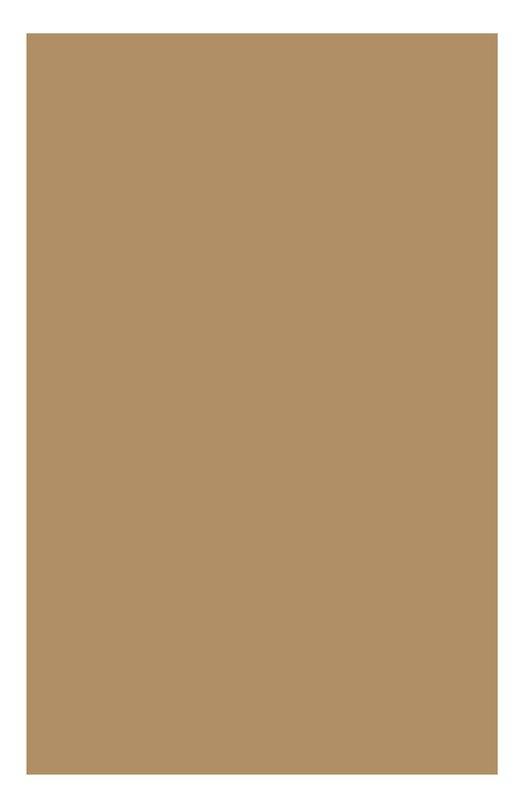 Регенерирующий тональный крем Teint Multi Regenerant 113 Clarins 04020410