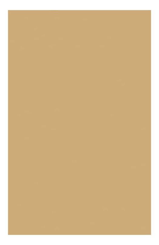 Тональный крем регенерирующий Extra-Firming Foundation 110 Clarins 04020010