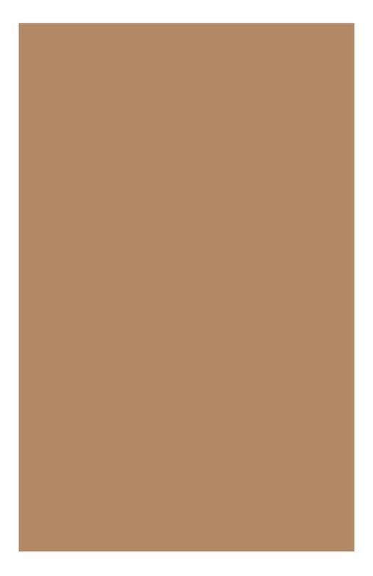 Увлажняющий тональный крем. придающий сияние коже Skin Illusion SPF10 110.4 Clarins 04025510