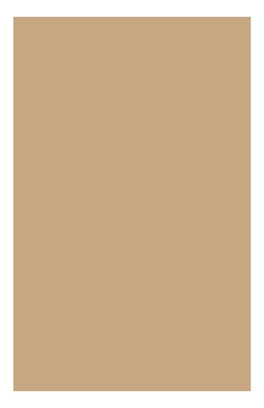 Устойчивый тональный крем SPF15 Teint Haute Tenue 113 Clarins 04022410